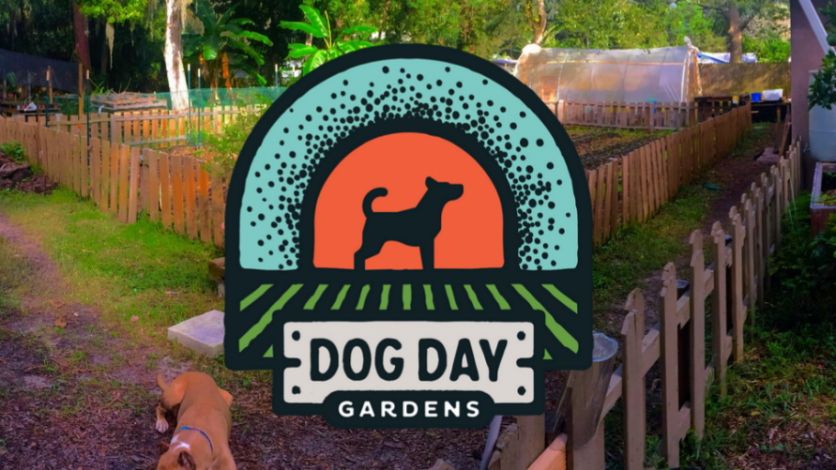 Dog Day Garden organic gardening workshop in northeast florida