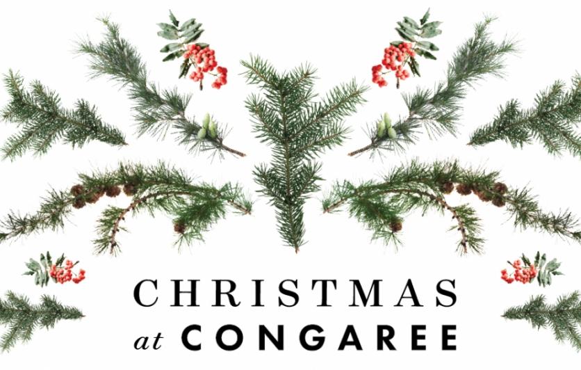 Congaree Christmas