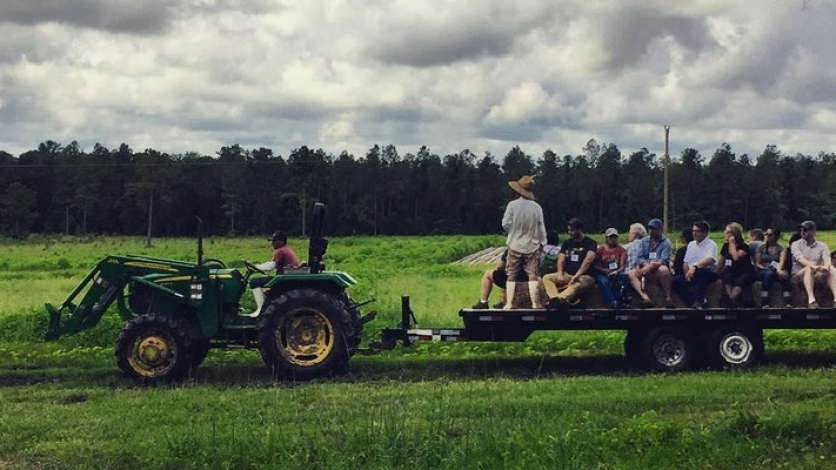 Community potluck and farm tour at Frog Song