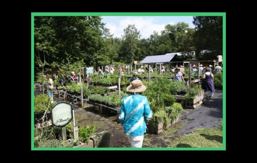 Maggie's Herb Farm birthday celebration