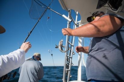 catching fish on amelia island