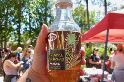 Pineapple Coalescence Wellspring Kombucha