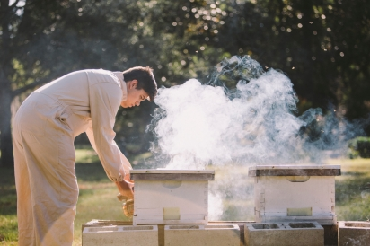 Justin Stubblefield using smoker on hives