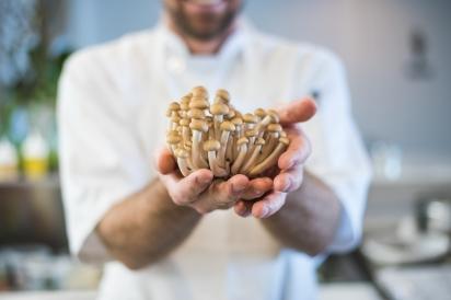 Beech Mushrooms at Restaurant Doro