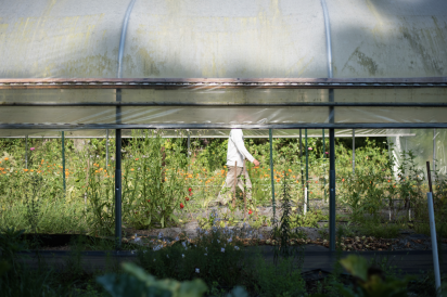 Brian Lepinski walks the greenhouses at Down to Earth farms in Jacksonville Florida