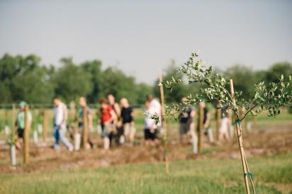 Farm Tour at Congaree and Penn farm outside of Jacksonville