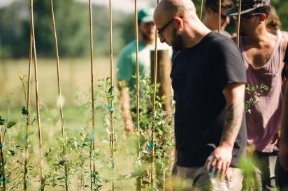 Restaurant Orsay crew exploring Congaree and Penn Farm