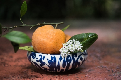 orange and chive flower in blue and white bowl