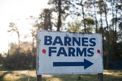 barnes farms sign