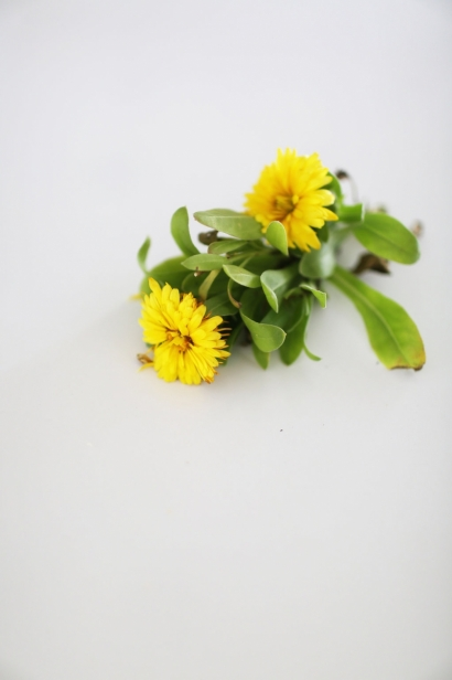 Edible Calendula Flowers