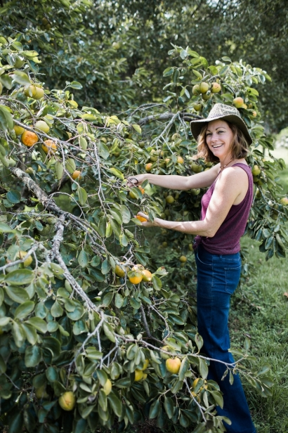 Becky Cardenas cutting persimmons