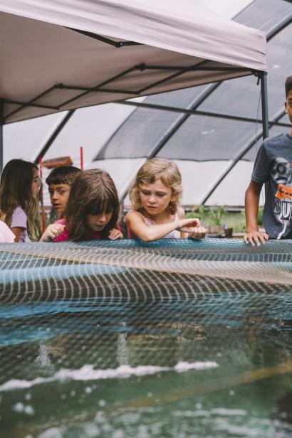 kids at aquaponic pool