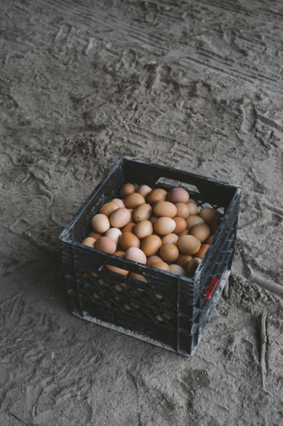Farm eggs in a crate