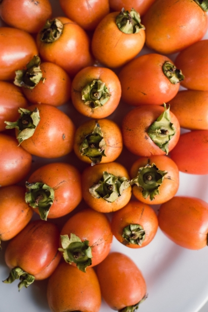 Persimmons in season at the Florida Local food summit in Gainesville