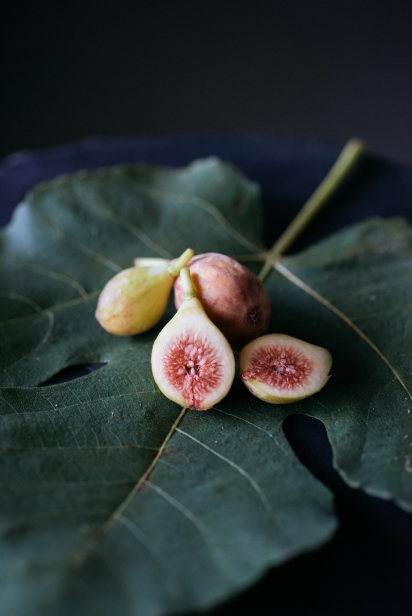 celeste Figs on a leaf