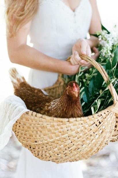 chicken resting in basket