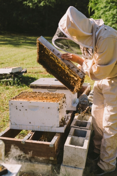 Justin Stubblefield opens hive