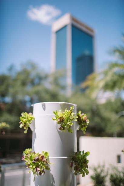 vertical tower garden
