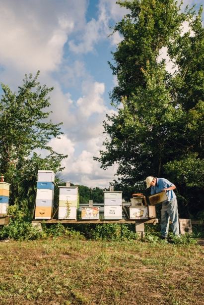 Beekeeper Bo Sterk tends to his honey bee hives outside of St. Augustine Florida