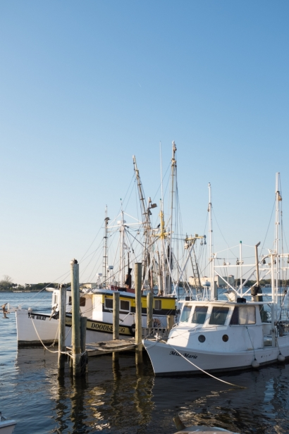 boats at dock at singletons seafood shack florida