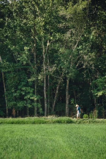 Farmer at Congaree and Penn