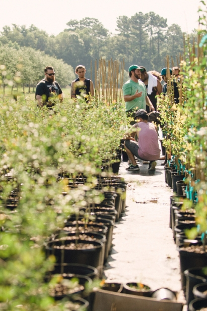 Seeing how good grows at Congaree and Penn