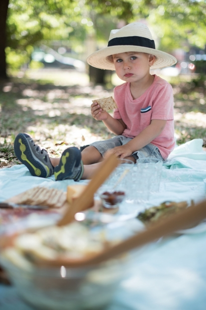boy at a picnic
