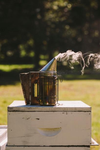smoker at bee hive