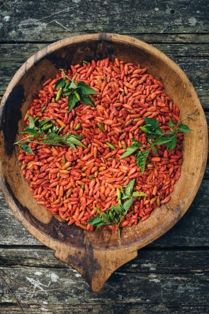 Florida grown bird peppers