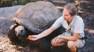 zookeeper feeding tortoise