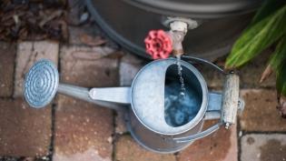 Watering with rain barrels