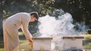 Beekeeper tending hives in Northeast Florida