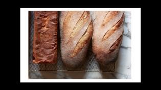 Sbraga Bread to go jacksonville