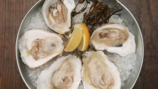fresh raw oysters on a tray with ice and lemon from bistro aix in san marco