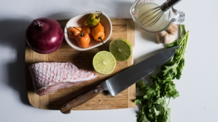 ingredients for ceviche